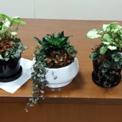Bengkel Mini Pot Arrangement 17 September 2020